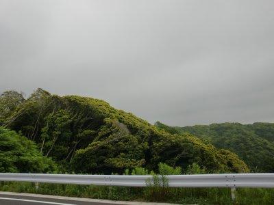 20110611_08