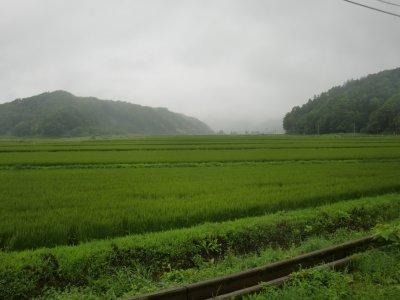 20120805_03