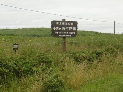 20120806_16