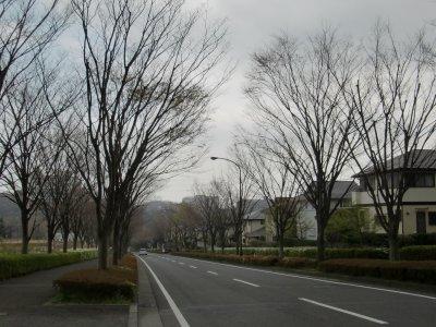 20130324_04_2